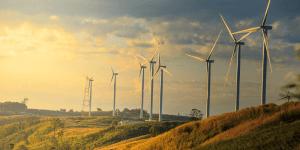 Sumant Sinha Environment green leader